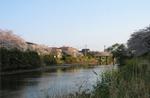 夕暮れと川沿い